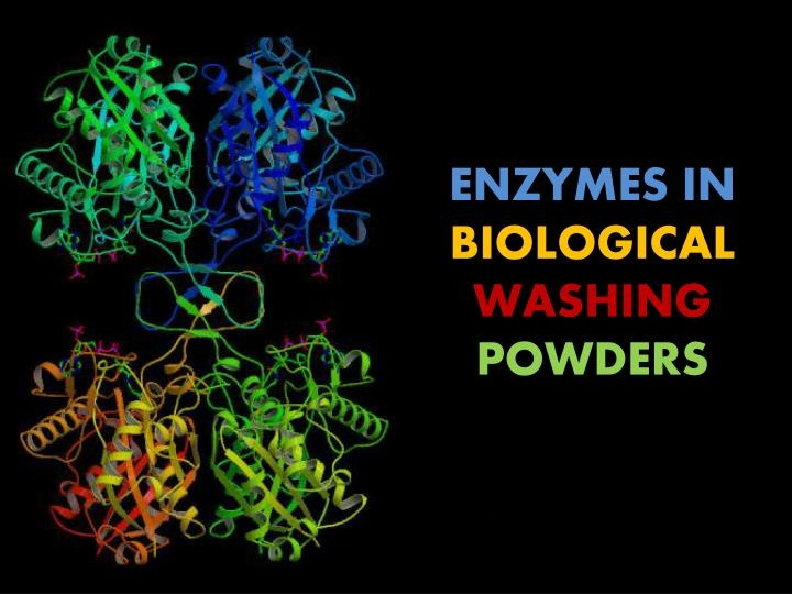 Uses of Enzyme in Biological Washing Powder (Protease)